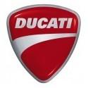 Crashpady Ducati